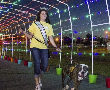 NOVADog-Magazine-Glow-Dog-Glow-See-Spot-Race-5K-May-2015-Pet-Exercise-Event-Virginia-26