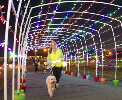 NOVADog-Magazine-Glow-Dog-Glow-See-Spot-Race-5K-May-2015-Pet-Exercise-Event-Virginia-30