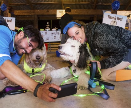 NOVADog-Magazine-Glow-Dog-Glow-See-Spot-Race-5K-May-2015-Pet-Exercise-Event-Virginia-53