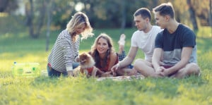 NOVADog-Events-Wine-Walks-outdoor-fun-dog-canine-activities-picnic