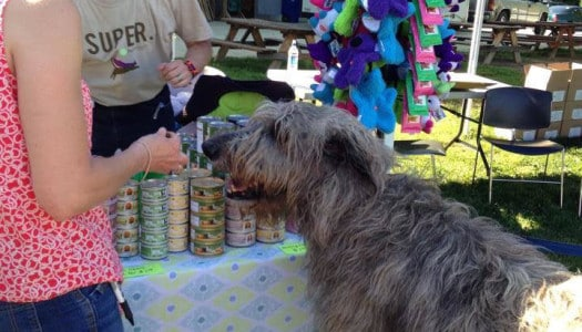 Springfield Days PetFest Welcomes Everyone Who Loves Pets!