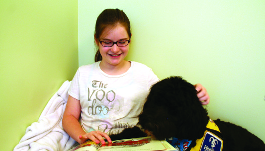 Heeling House: Pioneering Animal Assisted Interaction (AAI) into Children's Therapy