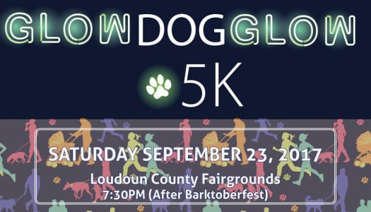Mark Your Calendars: The 3rd annual GlowDOGGlow 5K is set to light up the night this September!