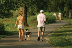 Veterinary Questions Tips for Running with Dog - NOVADog Magazine - Glow Dog Glow 5k