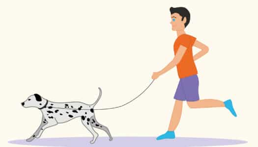 Pooch to Pavement 5K Training Schedule: Week 1