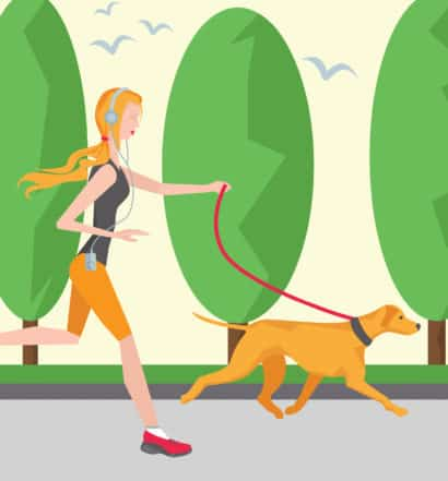 NOVADOG GlowDOGGlow 5k Race -Canine Running Training Schedule