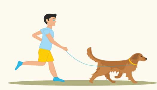 Pooch to Pavement 5K Training Schedule: Week 5