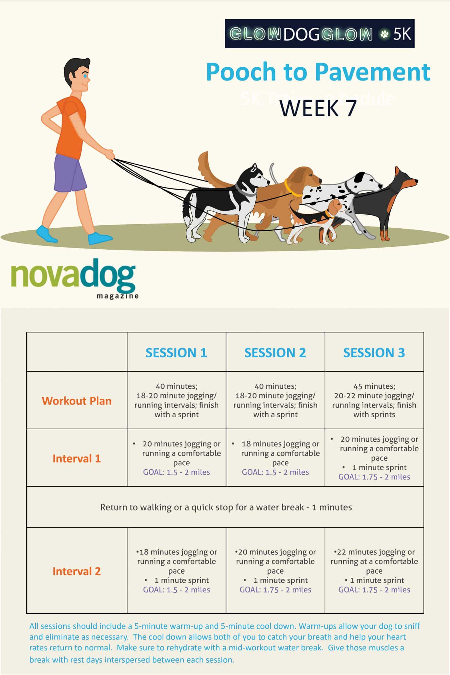 Running with Dogs - Canine Training Plan