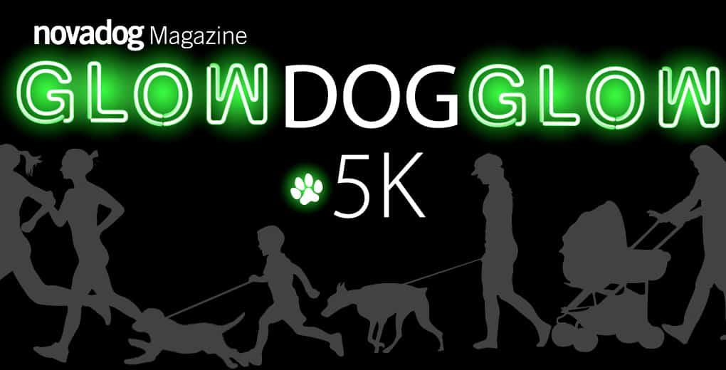 GlowDogGlow 5K