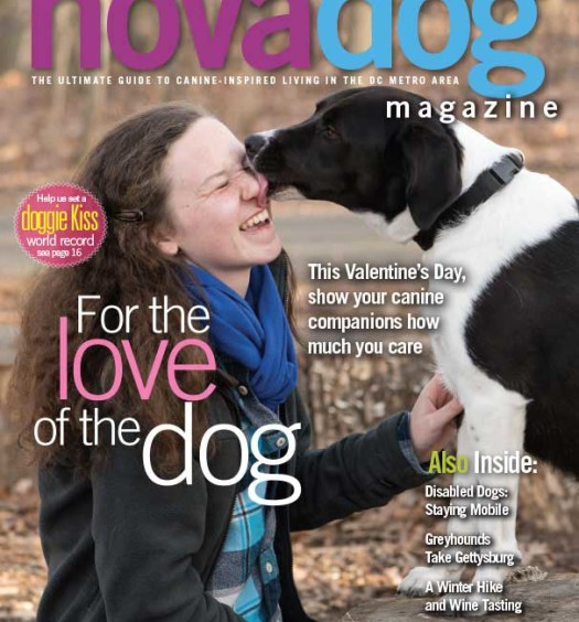 NOVADog's Winter 2015 issue