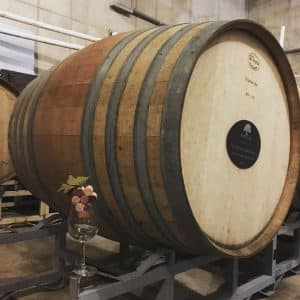 NOVADog-events-wine-hike-barrel-oak-fun-dogs