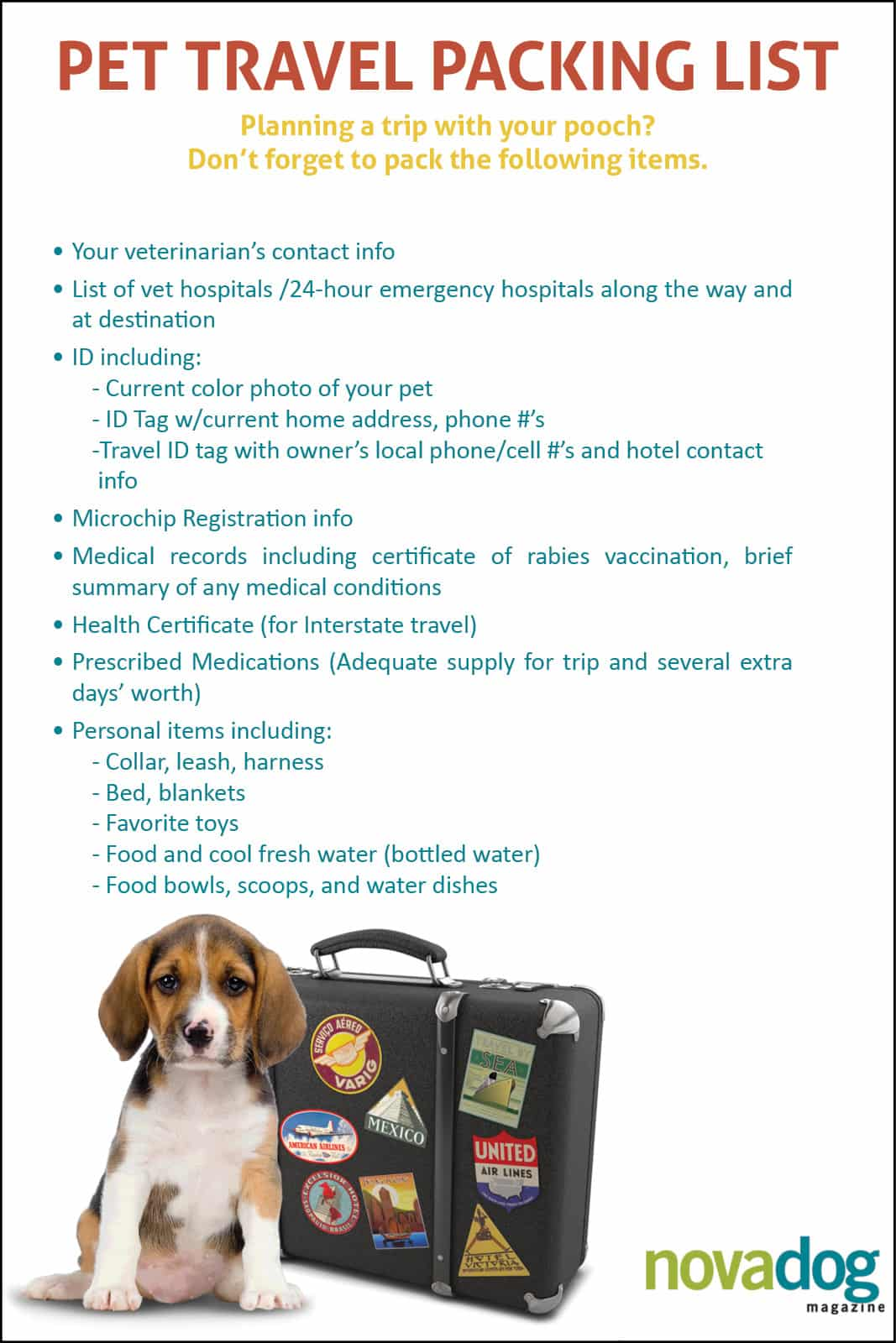 Pet Dog Travel Packing List
