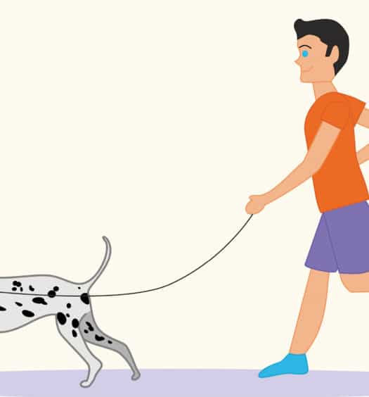 Pooch to Pavement Canine Running Plan- NOVADog Magazine