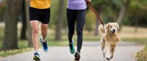 Running With Dog Socializing Dogs NOVADog Magazine