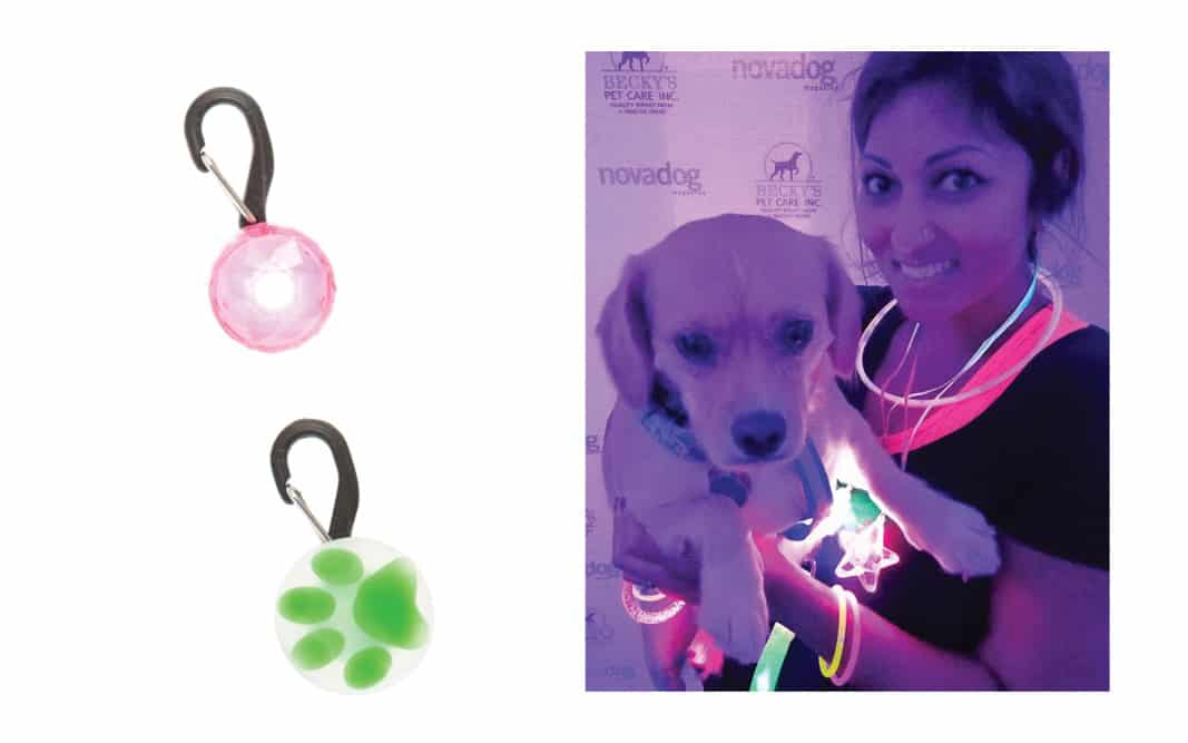 LED Dog Collar Jewels - PetSmart