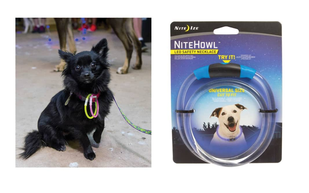 Nite Ize NiteHowl LED Safety Dog Necklace PetSmart