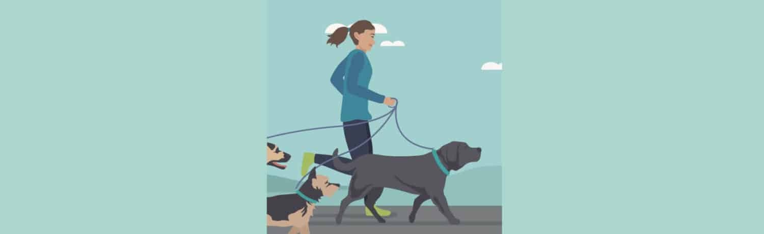 Running with Dog Training Plan
