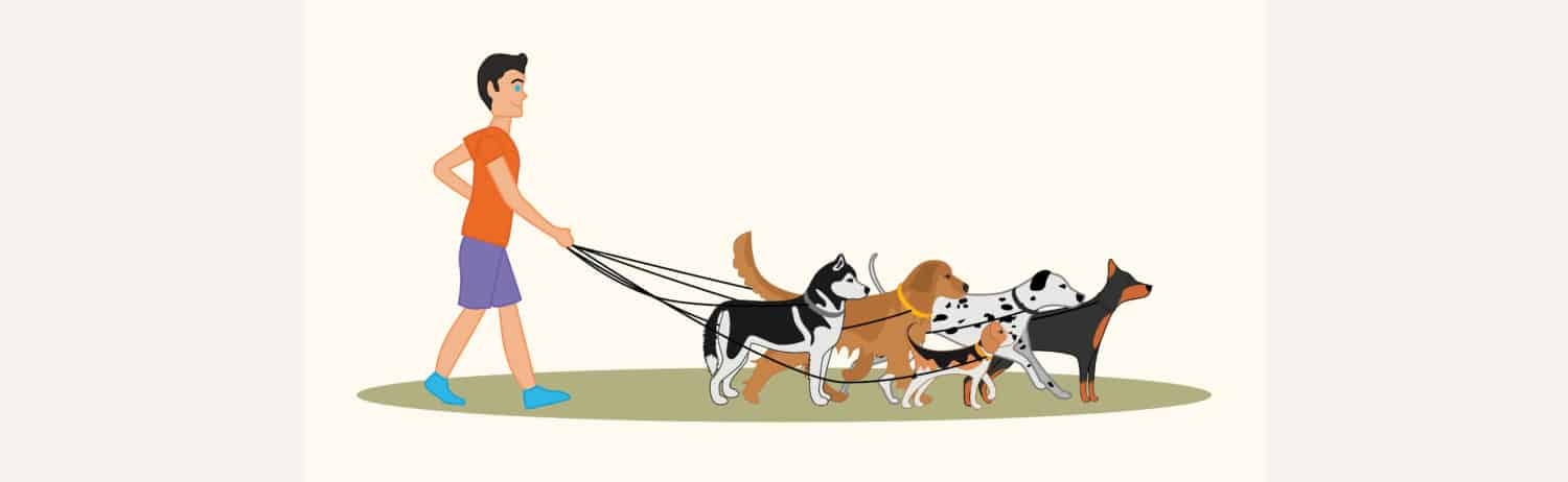 Running with Dogs - Canine Training Exercise Plan - NOVA Dog Magazine