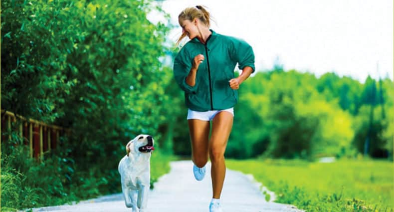 Running with Dog - Canine Exercise Training Calendar