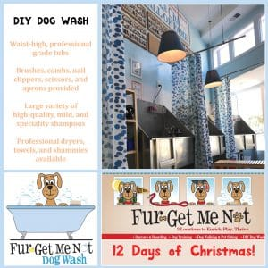 Fur-Get Me Not DIY Dog Washes NOVADog Magazine