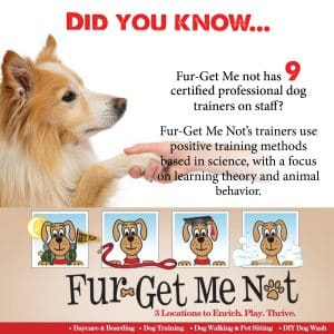 Fur-Get Me Not Certified Professional Dog Training NOVADog Magazine