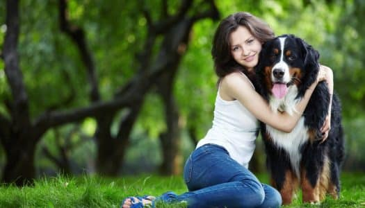 Professional Pet Sitters Week: Recognizing Excellence in Dog Walking and Pet Sitting in the National Capital Area.